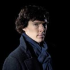 Profile picture of sherlock
