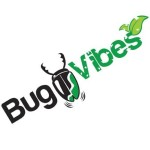 Profile picture of bugvibesblog
