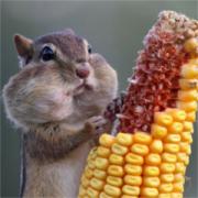 Jonathan Smithers's avatar
